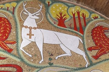 Cerf blanc église du graal