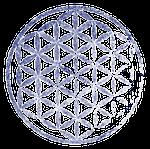 Logo sans nom sans fond violet et blanc