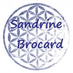 Logo Sandrine Brocard
